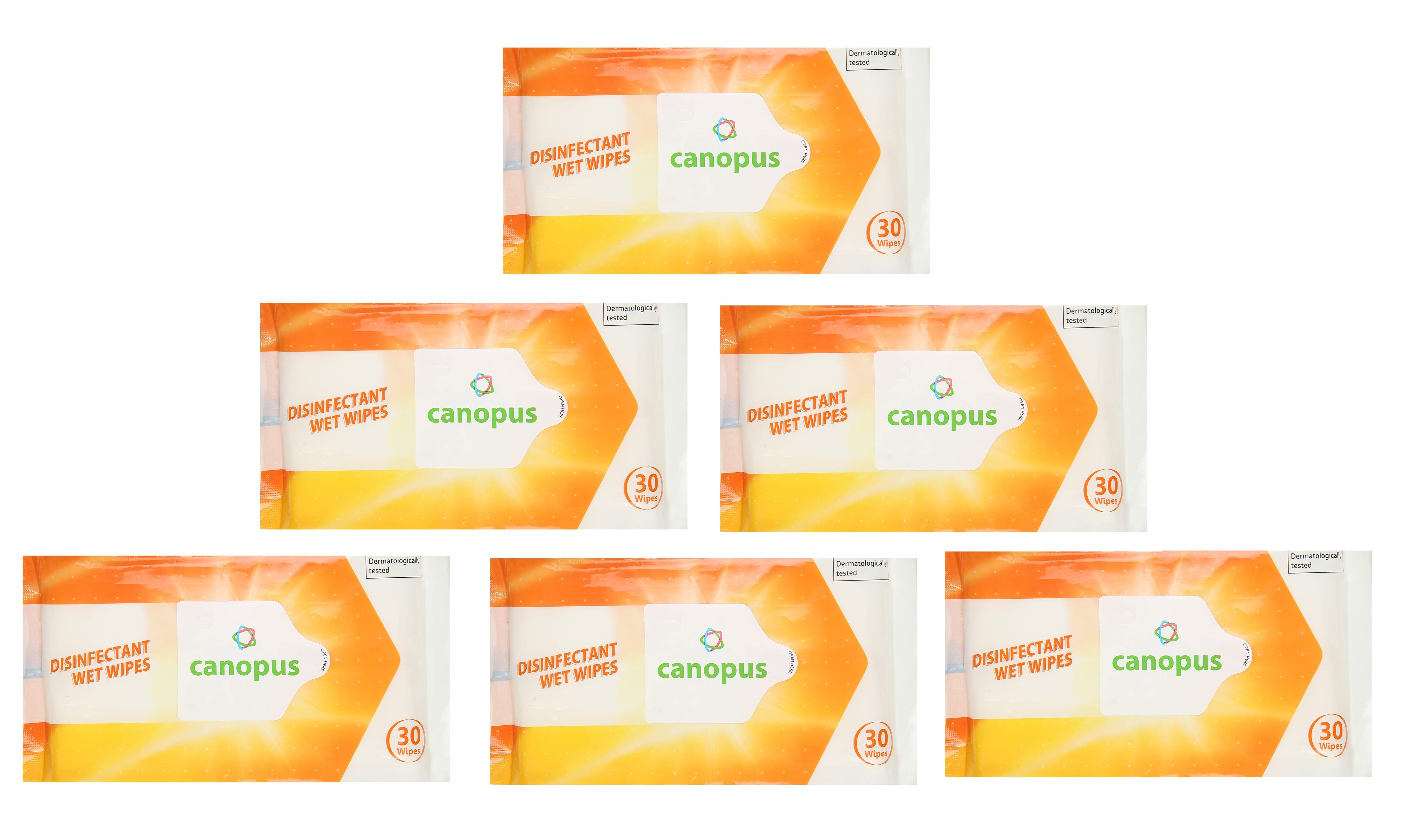CANOPUS DISINFECTANT WIPES PACK OF 6