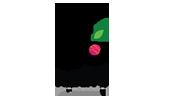 Flyberry Gourmet